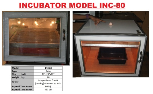 G5 Incubator INC-80